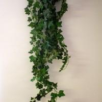 Ivy Sprig Bung