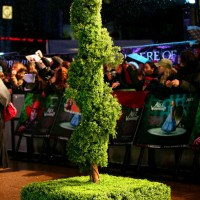Topiary Twist