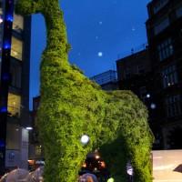 Topiary Animals ~ Giraffe