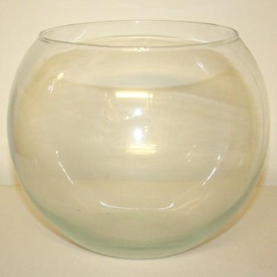 Clear Glass Globe Bowl